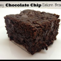 Recipe: Chewy Chocolate Chip Einkorn Brownies